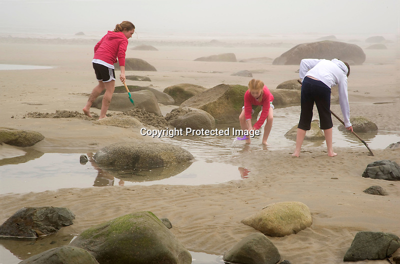 Young Girls Exploring Tidal Pools on a Foggy Beach in Wells, Maine