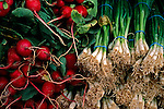 Green Onions & Radishes