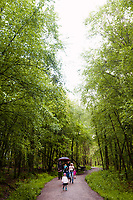 Visitors walking to Pooh Bridge in Ashdown Forest, Sussex, UK, May 19, 2017. Picturesque Ashdown Forest stretches across the countries of Surrey, Sussex and Kent, and is the largest open access space in the South East of England. It is famous as the geographical inspiration for the Winnie the Pooh stories and is popular with fans of the characters.