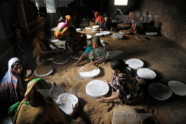 Cigarette production in the north of Bangladesh. The dust produced during the drying, shredding and processing of the tobacco irritates the throat, nose and eyes. Like most low-paid industry in Bangladesh, children often make up a large part of the workfrce.