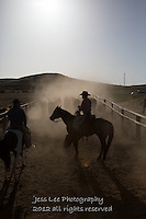 down the chute Cowboys working and playing. Cowboy Cowboy Photo Cowboy, Cowboy and Cowgirl photographs of western ranches working with horses and cattle by western cowboy photographer Jess Lee. Photographing ranches big and small in Wyoming,Montana,Idaho,Oregon,Colorado,Nevada,Arizona,Utah,New Mexico.