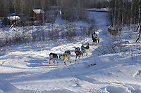 Saturday, February 24th, Knik, Alaska.  Jr. Iditarod musher Gerald Outwater on the trail shortly after leaving the Knik start