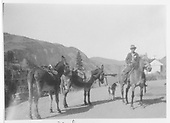 Rider with pack mules at Ophir.<br /> RGS  Ophir, CO