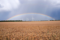 Rainbow over wind turbines and what field - Lincolnshire, August