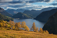 Autumn mountain landscape above Norddalsfjord, Møre of Romsdal, Norway