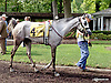 Love To Dance before The Cre Run Oaks (gr 2) at Delaware Park on 9/1/14