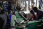 TANZANIA Tanga, Sisal farming and industry, Katani Ltd., Fibre is extracted by a process known as decortication, where leaves are crushed and beaten by a rotating wheel set with blunt knives, so that only fibres remain / TANSANIA Tanga, Sisal Industrie, Katani Ltd., Decortication Maschine  zur Gewinnung der Faser aus den Blaettern der Sisalpflanze