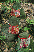 A Shinto shrine of three stone figures adorned with  cloth aprons seems to be a bit mysterious  to Western eyes.