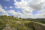 Sebastia, the Israelite acropolis, ruins of the palace of Omri, King of Israel and founder of Shomron-Samaria