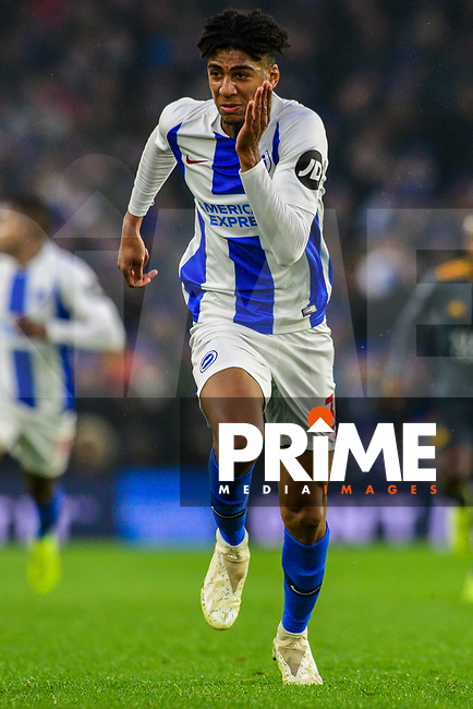 Bernardo of Brighton & Hove Albion (30)  during the Premier League match between Brighton and Hove Albion and Leicester City at the American Express Community Stadium, Brighton and Hove, England on 24 November 2018. Photo by Edward Thomas / PRiME Media Images.