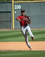 Jose Curpa - Arizona Diamondbacks 2020 spring training (Bill Mitchell)