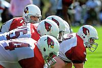 Jul 31, 2009; Flagstaff, AZ, USA; Arizona Cardinals quarterback Kurt Warner (left) prepares to take the snap from center Lyle Sendlein during training camp on the campus of Northern Arizona University. Mandatory Credit: Mark J. Rebilas-