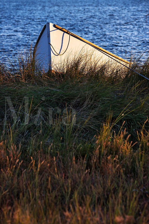 Rowboat in marsh grass, The Lagoon, Martha's Vineyard, Massachusetts, USA
