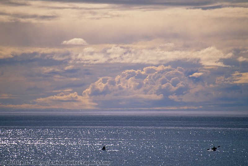 Sea kayakers paddle in the Arctic ocean off the coast of the native village of Utqiagvik (Barrow), in arctic Alaska.