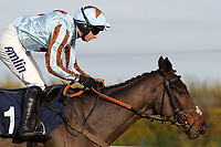 Race winner Royale Knight ridden by Tom O'Brien in jumping action during the racinguk.com Handicap Hurdle