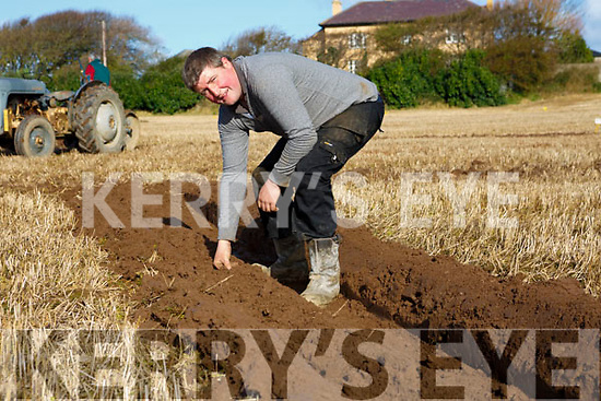 Michael P. Donogan, Causeway at the Ballyheigue's ploughing match at  the Rectory field, Buncurrig on Sunday
