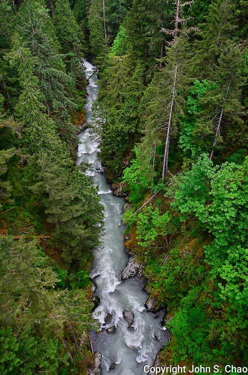 Carbon River flows through evergreen forest, a 250 foot high view from Carbon River Bridge, aka Fairfax Bridge, Carbonado, by Mount Rainier National Park, Washington State.