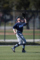 Upper Iowa University Peacocks outfielder Eric Cottrell (10) during a game against Slippery Rock University at Frank Tack Field on March 14, 2014 in Clearwater, Florida.  Slippery Rock defeated Upper Iowa 14-9.  (Mike Janes/Four Seam Images)