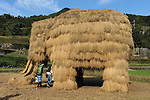 Straw Art, Mammoth made of rice straw, in Shodoshima for Setouchi International Art Festival.<br />