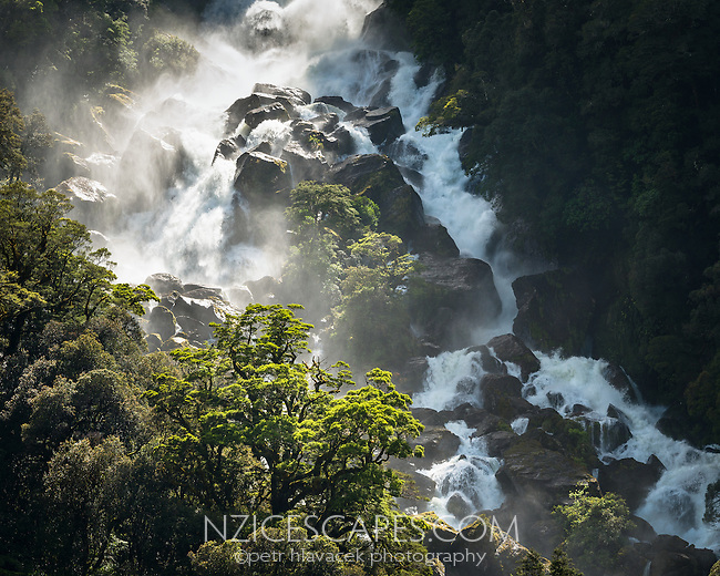 Roaring Billy Falls near Haast, West Coast, South Westland, UNESCO World Heritage Area, New Zealand, NZ