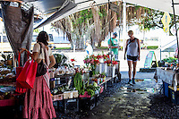 Flower and food vendors at the Hilo Farmers Market, with a banyan tree and the ocean in the distance, downtown Hilo, Big Island of Hawai'i.
