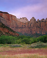 Zion National Park, UT<br /> Towers of the Virgin stand above the green trees and meadow grasses of Oak Creek in Zion Canyon