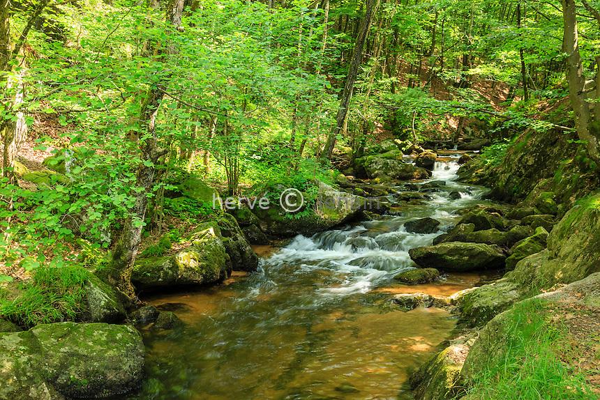 France, Allier (03), Arfeuilles, la rivière le Barbenan proche du site de la cascade de la Pisserotte // France, Allier, Arfeuilles, Barbenan river