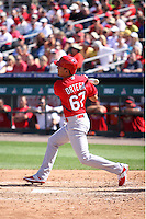 Rafael Ortega (67) of the St. Louis Cardinals at bat during a spring training game against the Miami Marlins at the Roger Dean Complex in Jupiter, Florida on March 5, 2015. St. Louis defeated Miami 4-1. (Stacy Jo Grant/Four Seam Images)