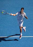 Djokovic Mid-Court Forehand