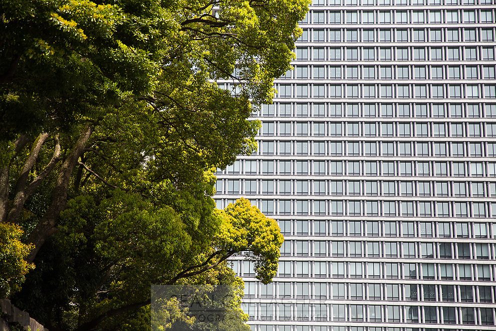 Highrise buildings in central Tokyo.