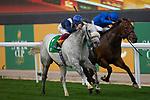 RIYADH,SAUDI ARABIA-FEB 29: Dark Power,ridden by Frankie Dettori,wins the 1351 Turf Sprint at King Abdulaziz Racetrack on February 29,2020 in Riyadh,Saudi Arabia. Kaz Ishida/Eclipse Sportswire/CSM
