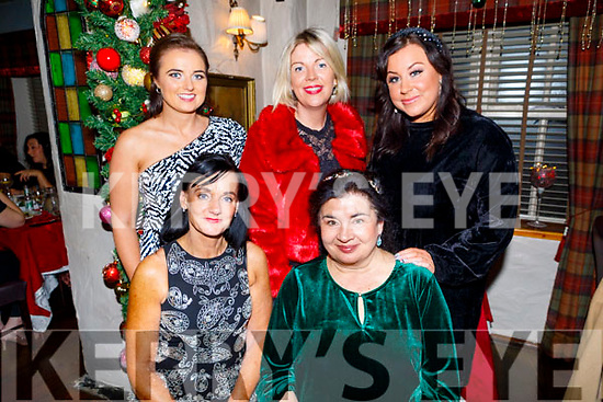 Staff of the KCFE enjoying the evening out in Cassidys on Friday.<br /> Seated l to r: Mary Lucey and Siobhan Griffin.<br /> Back l to r: Joanne O'Mahoney, Celia O'Shea and Michaela Brosnan.