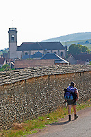 Trekking walking in the vineyards. Pommard village with church. Pommard, Cote de Beaune, d'Or, Burgundy, France