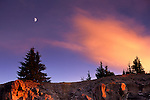 Moon and sunset light on clouds over pine trees, Crater Lake National Park, Oregon