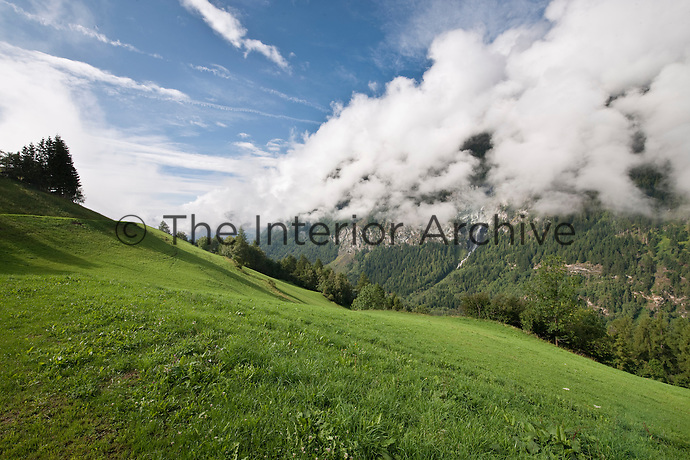 The view from the chalet over the sunlit meadows and pastureland