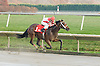 Hard Spun in his 2nd start winning The Port Penn Stakes on November 14, 2006