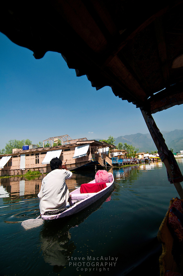 Man paddling pink colored shikara on Dal Lake, Srinagar, Kashmir, India.