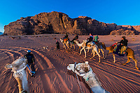 Tourists on a a camel ride, Arabian Desert, Wadi Rum, Jordan.