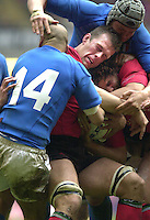 27/03/2004  -  RBS Six Nations Championship 2004 Wales v Italy.Welsh forwards Gareth Llewellen [left] and Colin Charvis.hold onto the ball.   [Mandatory Credit, Peter Spurier/ Intersport Images].