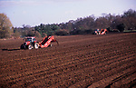 A913N6 Tractors and trailer planting potatoes in field Suffolk sandlings England