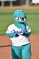 Oggie the Ogden Raptors mascot during the game against the Great Falls Voyagers on July 16, 2014 at Lindquist Field in Ogden, Utah. (Stephen Smith/Four Seam Images)