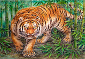 Kayomi, REALISTIC ANIMALS, paintings, tiger, BambooForestTiger_M, USKH06,#A# realistische Tiere, realista, illustrations, pinturas