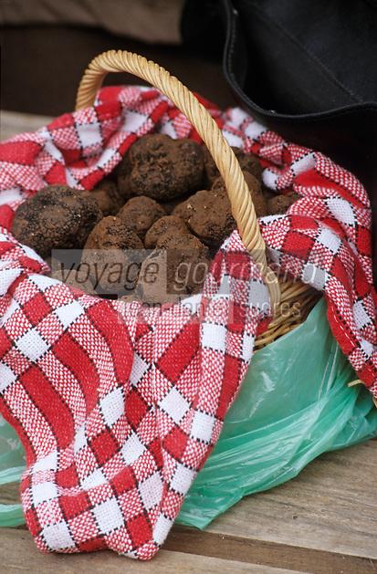 Europe/France/Midi-Pyrénées/46/Lot/Causse de Limogne/Lalbenque: Le marché aux truffes - Panier de truffes