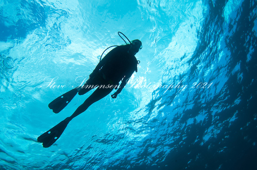 Scuba Diver Silhouette <br /> US Virgin Islands