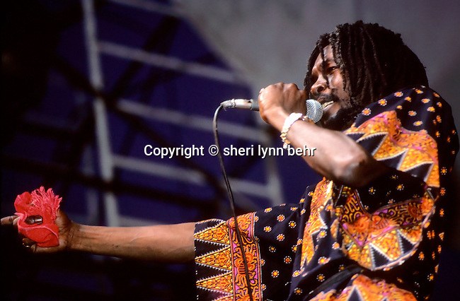 Peter Tosh performs onstage at the Dr. Pepper Music Festival in Central Park in New York City inAugust 1979