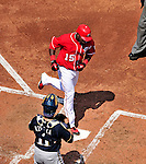 23 August 2009: Washington Nationals' shortstop Cristian Guzman crosses the plate after hitting a solo home run in the second inning against the Milwaukee Brewers at Nationals Park in Washington, DC. The Nationals defeated the Brewers 8-3 to take the third game of their four-game series, snapping a five games losing streak. Mandatory Credit: Ed Wolfstein Photo