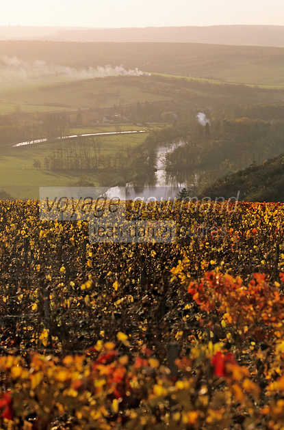 Europe/France/89/Yonne/Irancy : Le vignoble et la vallée de l'Yonne