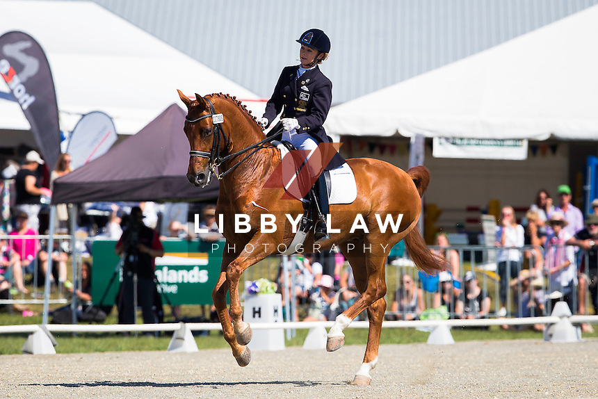 NZL-Julie Brougham (VOM FEINSTEN) TITLE WINNER: GARDNER HOMES CDI3* FEI GRAND PRIX FREESTYLE: 2015 NZL-Farmlands Horse Of The Year Show, Hastings (Sunday 22 March) CREDIT: Libby Law CREDIT: LIBBY LAW PHOTOGRAPHY