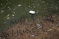 Trash washes up on shore in one of the mangroves in Zhanjiang, Guangdong Province. Over the past century, the world has lost over 50% of its coastal mangroves. They have been cleared mainly to make way for commercial shrimp and fish farms. The unique trees which live in salt water are valued for the ability to protect shorelines and are home to a diverse array of flora and fauna. 2010