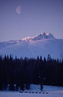 Jerry Riley on Finger Lake Alaska Range & Moon